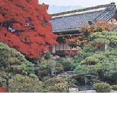 三百年の伝統美 江戸手描き友禅「寺澤森秋の世界」