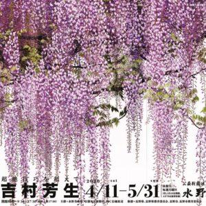 特別企画展「吉村芳生 超絶技巧を超えて」