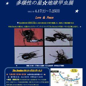 企画展「多様性の星☆地球甲虫展」