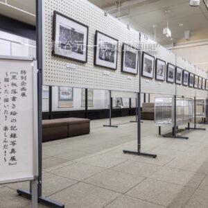 特別企画展「黒板落書き絵の記録写真展」